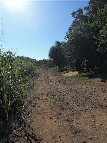 Puerto Iguazu 5