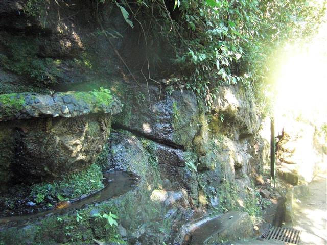Brasilian Falls 44